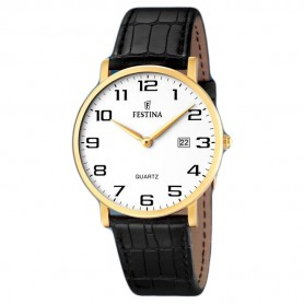 Festina Watch